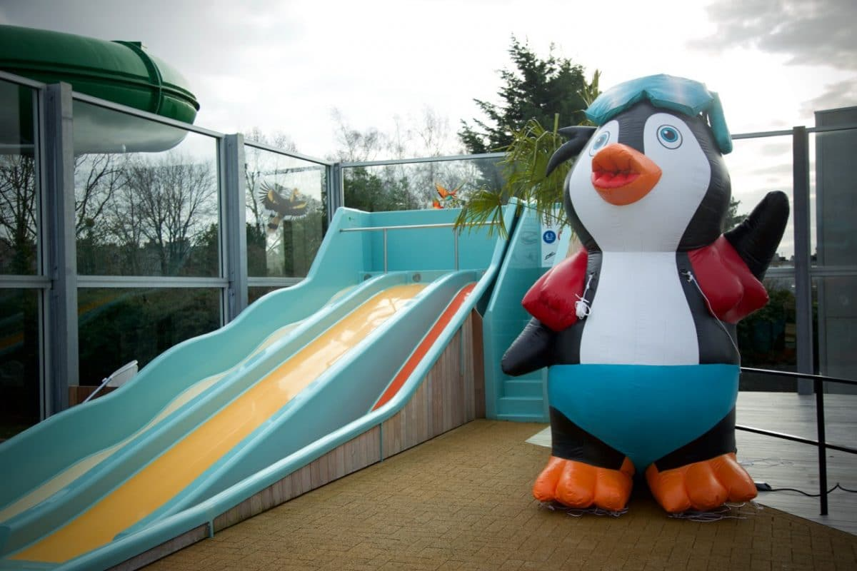 Opblaasbare pinguïn Lago Waterperels Lier